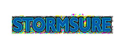 Résultat de recherche d'images pour 'logo stormsure'